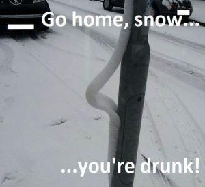 Go Home Snow